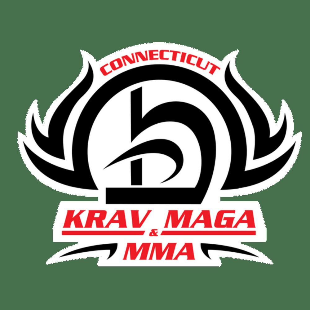 Large Logo Updated 1, CT Krav Maga and MMA